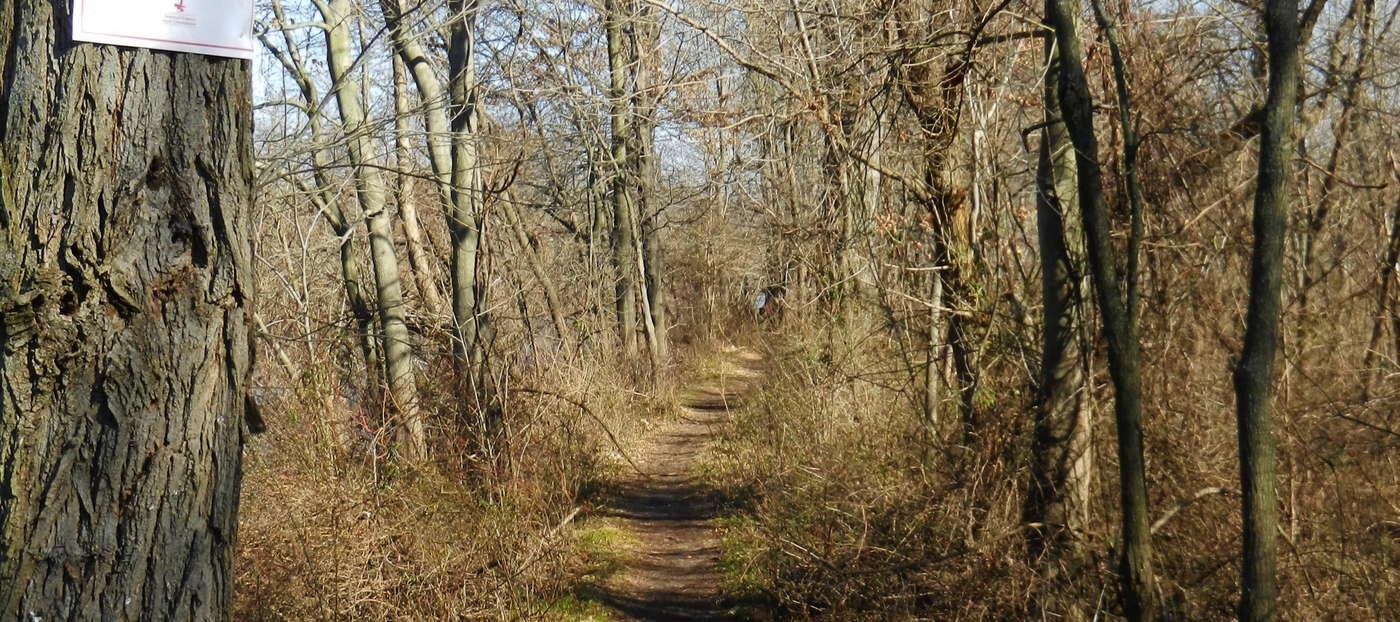 Duke Island Park | Old York Road, Bridgewater, NJ 08807 | Get ...