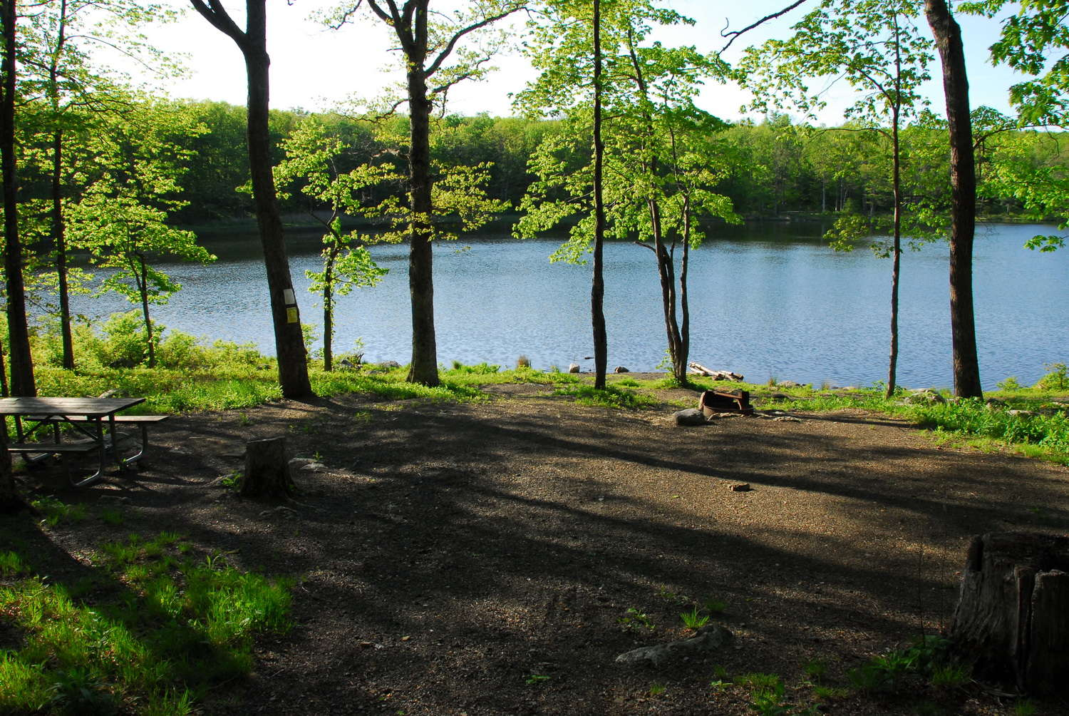 Photos of: Sawmill Lake Campground (2007) | Get Outside, New Jersey