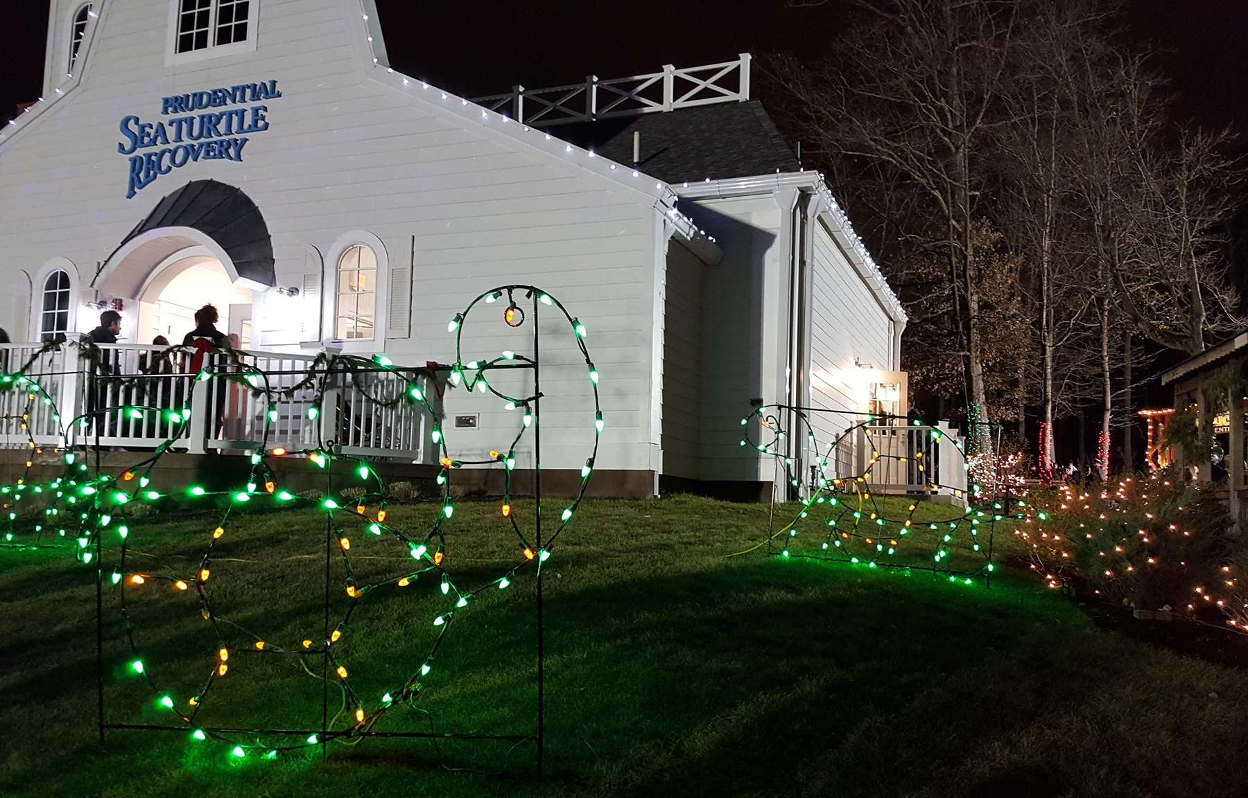 Turtle Back Zoo Christmas Lights 2019.Holiday Lights At The Turtle Back Zoo Get Outside New