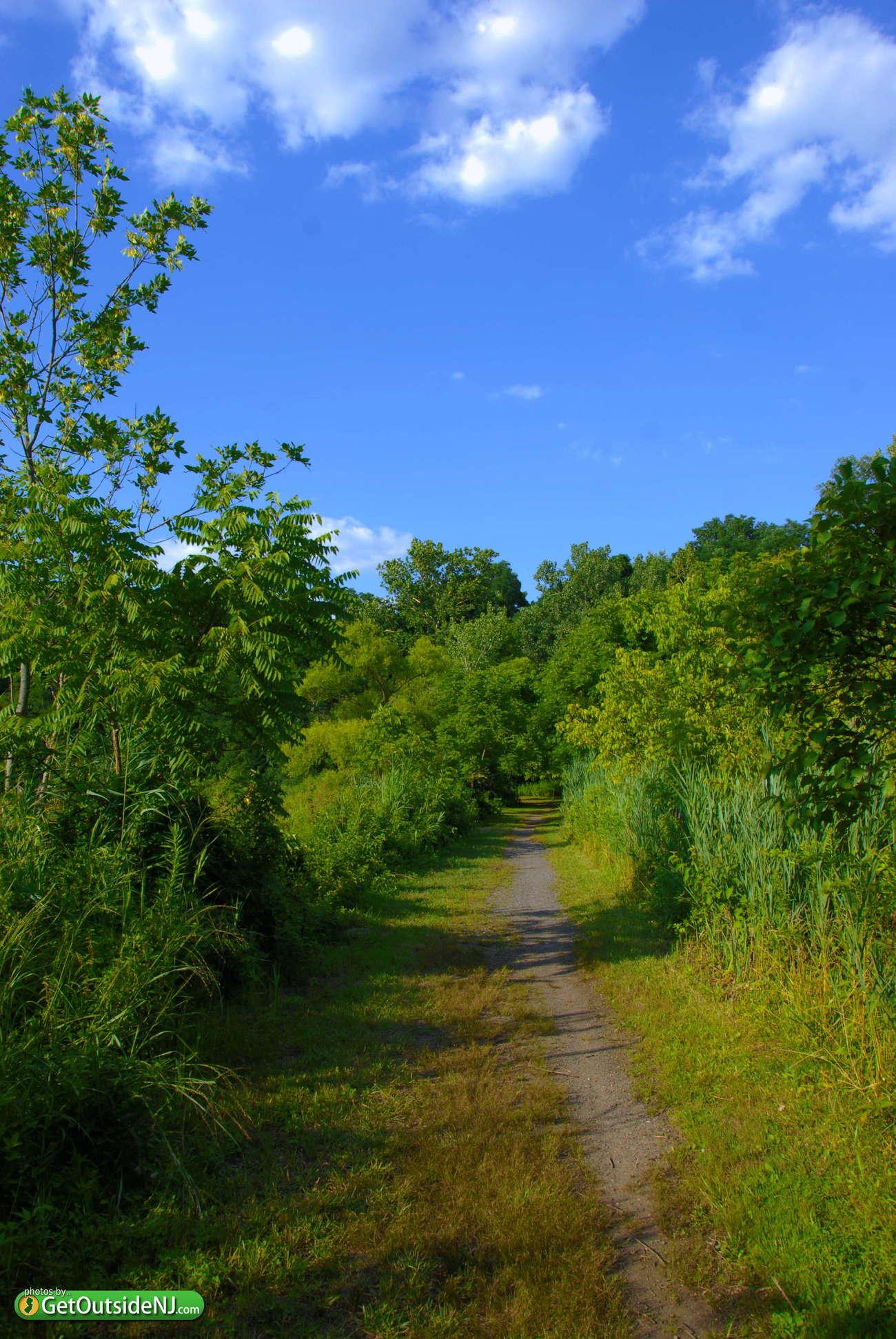 Mercer county park hamilton nj / St augustine courses