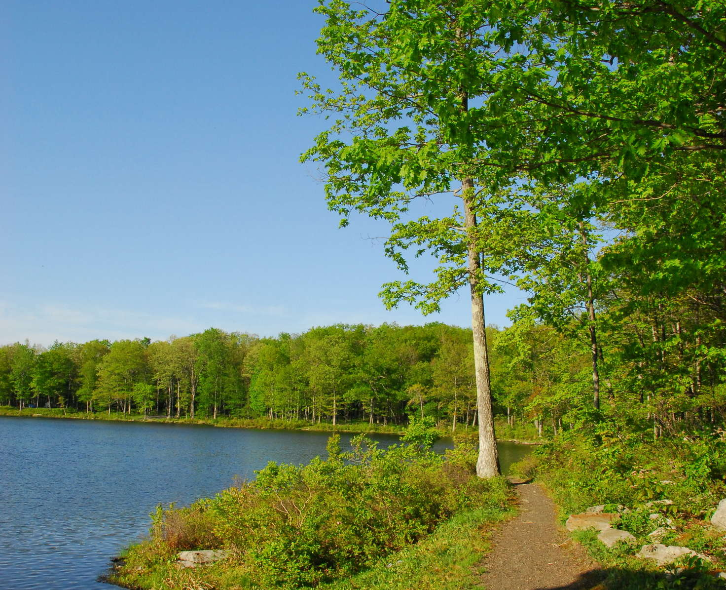 Sawmill Lake Campground at High Point | 1480 Route 23, Sussex, New